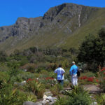Kleinmond_Attraction_HaroldPorter_large